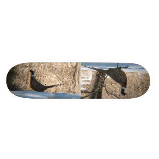 The Ring Neck Pheasants Skate Board Deck