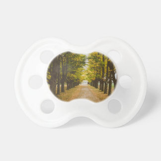 The Road of Life Pacifier