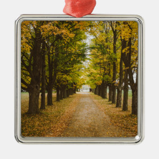 The Road of Life Silver-Colored Square Decoration