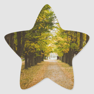The Road of Life Star Sticker