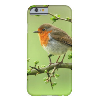 The Robin Barely There iPhone 6 Case