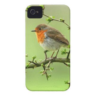 The Robin iPhone 4 Case-Mate Case