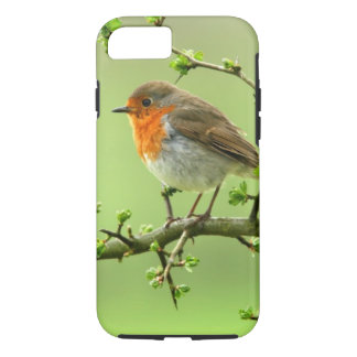 The Robin iPhone 8/7 Case