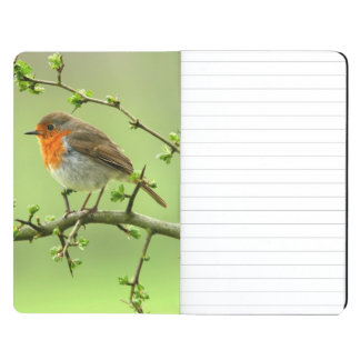 The Robin Journals