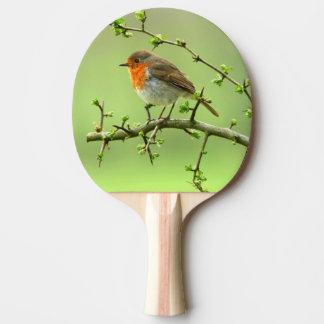 The Robin Ping Pong Paddle