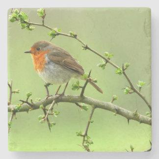 The Robin Stone Coaster