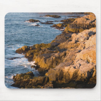 The rocky coast of Isle au Haut in Maine's Mouse Mat