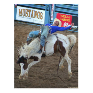 The Rodeo Collection - Wild Ride Postcards