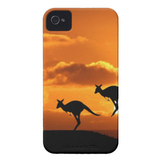 THE ROO RUNNERS iPhone 4 Case-Mate CASE