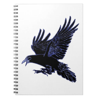 The Rook Spiral Notebooks
