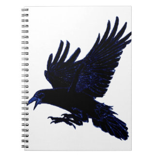 The Rook Notebook