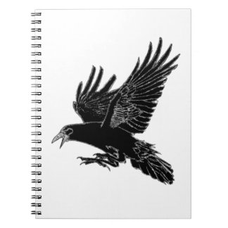 The Rook Notebooks