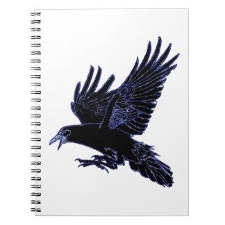 The Rook Spiral Notebooks