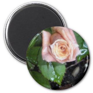 The Rose 6 Cm Round Magnet