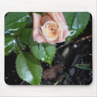 The Rose Mouse Pad