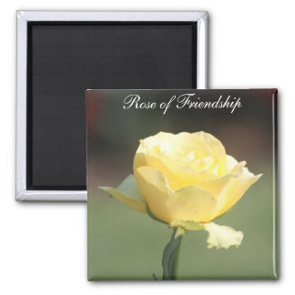 The Rose of Friendship Square Magnet