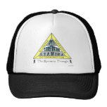 The RUNNER'S TRIANGLE Hat