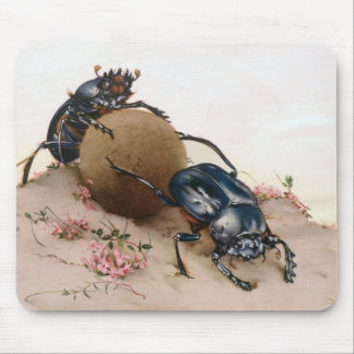THE SACRED BEETLE 2 MOUSE PAD