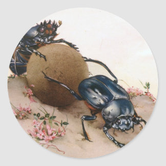THE SACRED BEETLE 2 ROUND STICKERS