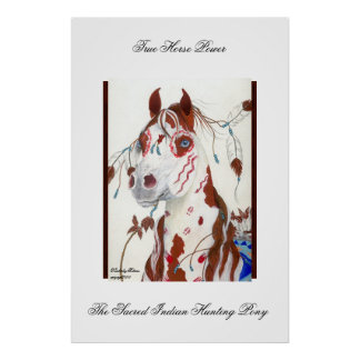 The Sacred Indian Hunting Pony Poster
