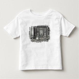 The Scarlet Drawing-room, Lansdown Tower Toddler T-Shirt