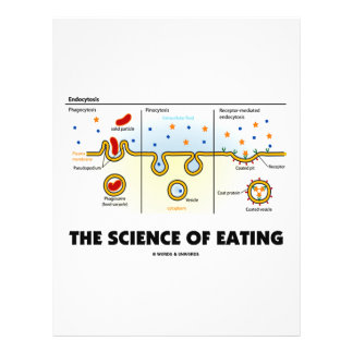 The Science Of Eating (Endocytosis Biology Humor) 21.5 Cm X 28 Cm Flyer