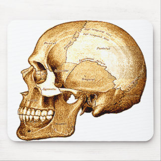 The Scientific Skull Mouse Mat