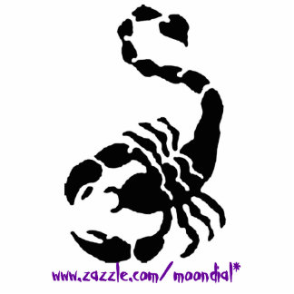 THE SCORPION, www.zazzle.com/moondial* Photo Sculpture Key Ring
