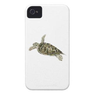 THE SEA TURTLE iPhone 4 Case-Mate CASE