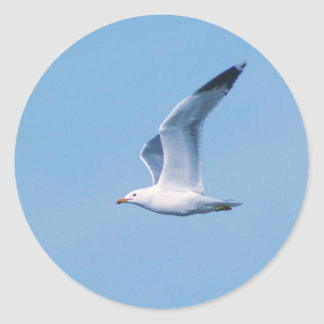 The Seagull Collection Classic Round Sticker
