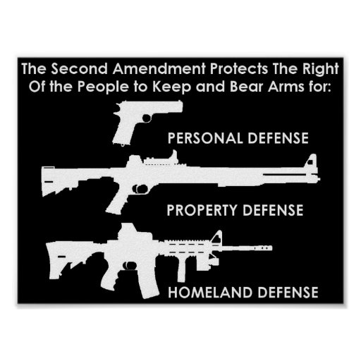 The Second Amendment Protects Poster