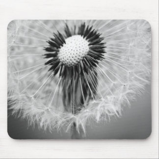 The Seeds of Tomorrow Mouse Mat