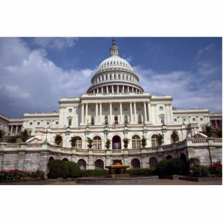 The Senate, Washington, D.C., USA Cut Out