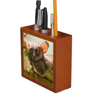 The Senegal Bushbaby (Galago Senegalensis) Desk Organiser