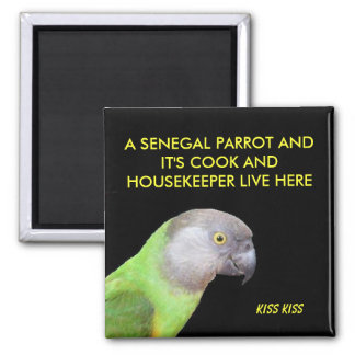 The Senegal Parrot Pet Magnet