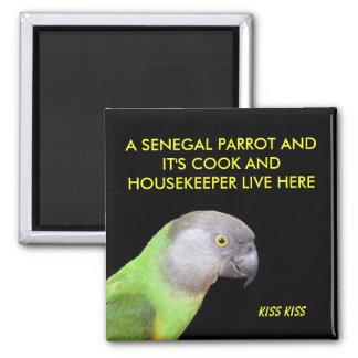 The Senegal Parrot Pet Square Magnet