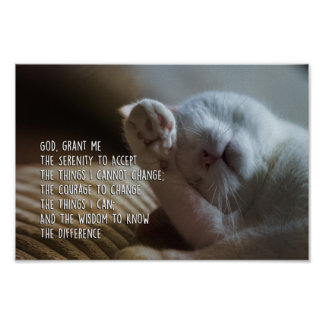 The Serenity Prayer Peaceful Cat Sleeping Poster