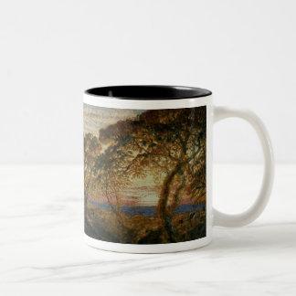 The Shadowy Stream Two-Tone Coffee Mug