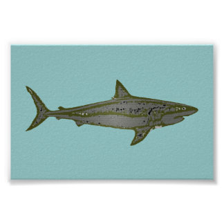 the shark poster