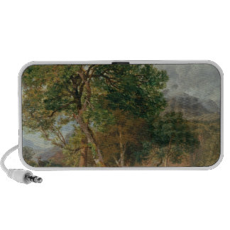 The Shores of Lake Lecco Laptop Speaker