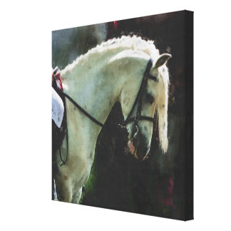 The Show Pony canvas Stretched Canvas Print
