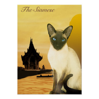 The Siamese Poster
