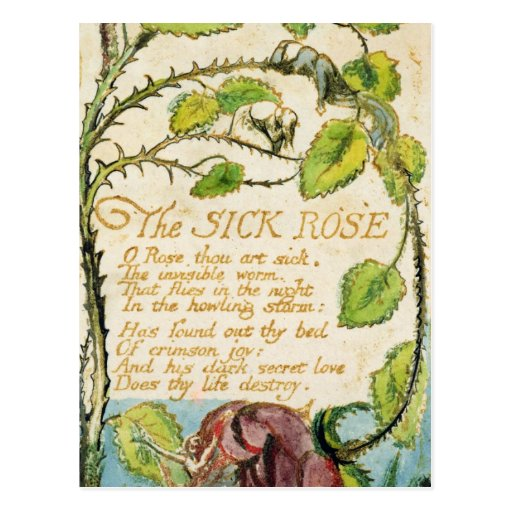 The Sick Rose, from Songs of Innocence Post Card