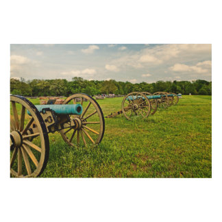 The Sights Of The Shiloh Military Park In Shiloh Wood Print