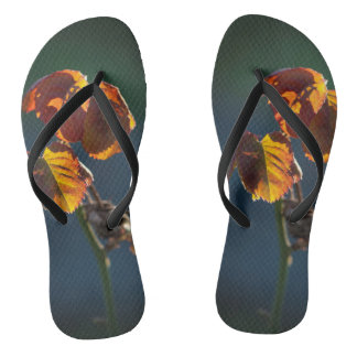 The simplicity of the leaves flip flops