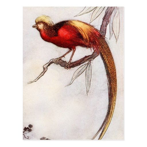 The Singing Bird of Heaven Post Card