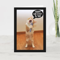 The Singing Cat Birthday Card
