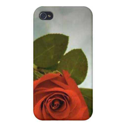 The Single Rose iPhone Case iPhone 4 Cases