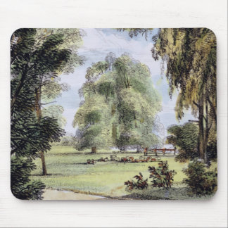 The Sister Trees, Kew Gardens, plate 8 from 'Kew G Mouse Mat