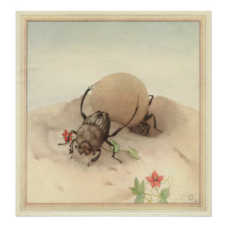 THE SISYPHUS - Insect Book Illustration Poster